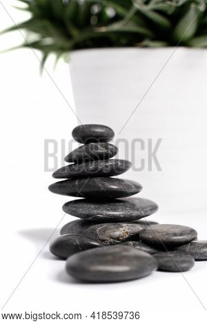 Close Up Of Stacked Black Pebbles Or Zen Stones And A White Succulent Flowerpot, Isolated On White B