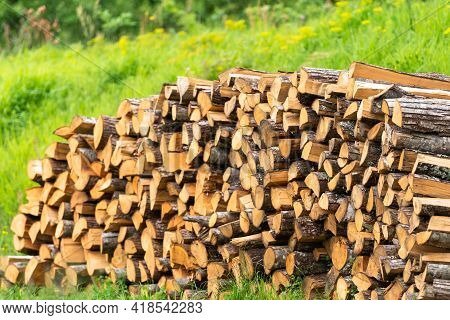 Firewood From Juicy Logs. A Lot Of Firewood Lies In Piles On The Fresh Grass. Focus On Nearby Firewo