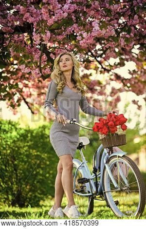 Excursion To Garden. Girl And Sakura Blossom. Cycling Tours. Cherry Tree Blooming. Athletic Woman Ri