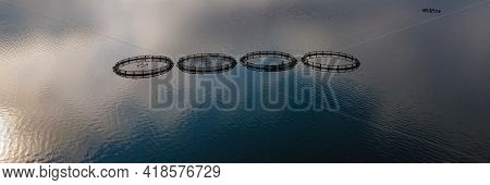 Fish Breeding Industry. Fish Cages Of Trout Fish Farm In Water. Food Industry, Traditional Craft Pro