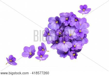 Floral Composition Of Violet Flowers Isolated On White Background. Flat Lay, Top View, Copy Space