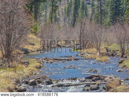 View Of  The High Altitude, Little Colorado River In Greer, Apache County, Arizona