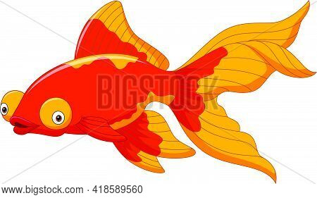 Vector Illustration Of Cartoon Cute Goldfish On A White Background