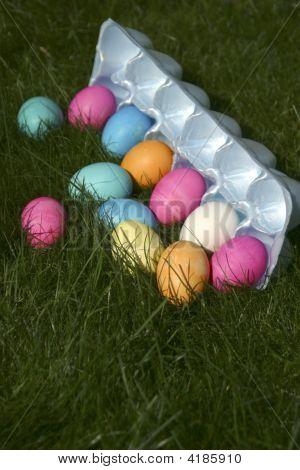 Easter Egg Carton Spilling Into Grass
