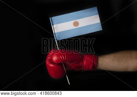 Boxer Hand Holds Flag Of Argentina. Boxing Glove With The Argentina Flag. Black Background