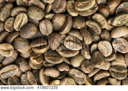 Green Unroasted Coffee Beans. Closeup Shot Of Coffee Beans.