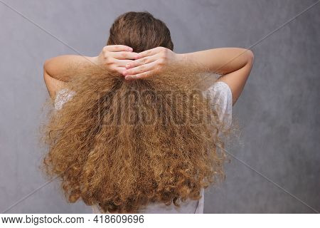 A Girl Gathering Her Thick Wavy Natural Hair With Her Hands. View From The Back. The Concept Of Hair