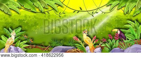 Jungle Vector Rainforest Landscape, Palm Silhouette, Banana Leaves, Parrot, Toucan, Sun Rays, Exotic