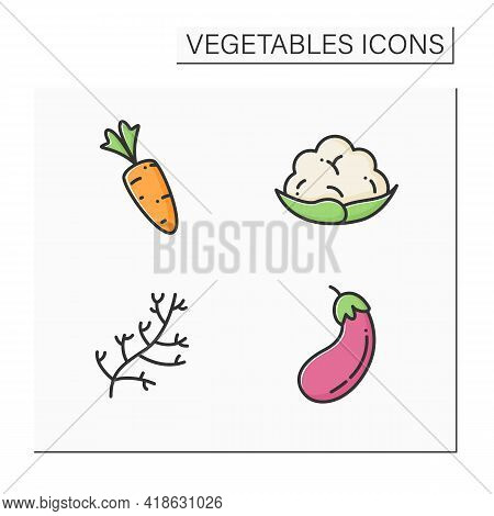 Vegetables Color Icons Set. Edible Plant. Vegetarian, Healthy Nutrition. Carrot And Dill, Eggplant A