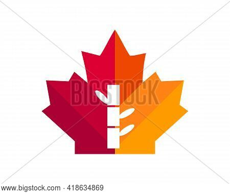 Maple Bamboo Logo Design. Canadian Bamboo Logo. Red Maple Leaf With Bamboo Vector