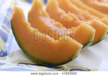Melon Plants In Natural Light
