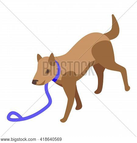 Disobedient Dog Icon. Isometric Of Disobedient Dog Vector Icon For Web Design Isolated On White Back