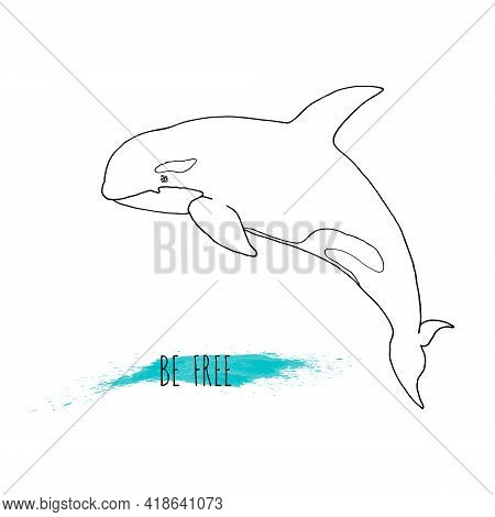 Killer Whale Simple Vector Illustration For Kids, Baby. Hand Drawn Sketch, Isolated On White Backgro