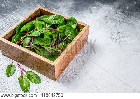 Raw Fresh Green Chard Mangold Leaves In A Wooden Box. White Background. Top View. Copy Space