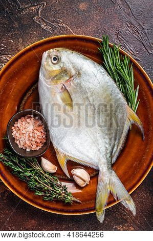 Fresh Raw Florida Pompano Fish On A Rustic Plate. Dark Background. Top View