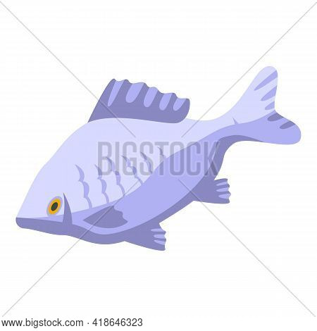 River Fish Icon. Isometric Of River Fish Vector Icon For Web Design Isolated On White Background