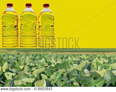 Plastic Bottles With Edible Soy Oil On A Commercial And Themed Background.