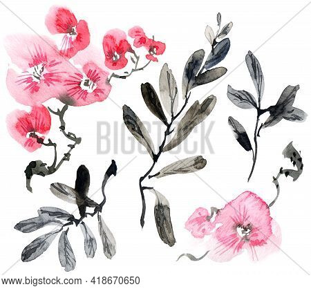 Watercolor Illustration Of Pink Flowers, Buds And Leaves. Oriental Traditional Painting In Style Sum