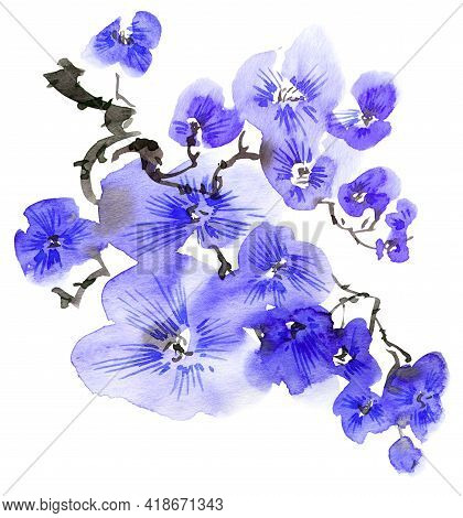 Watercolor And Ink Illustration Of Blossom Tree With Blue Flowers And Buds. Oriental Traditional Pai