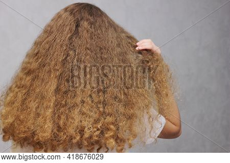 Beautiful, Strong, Healthy Female Hair. Thick, Natural, Long Wavy Hair. View From The Back. Services