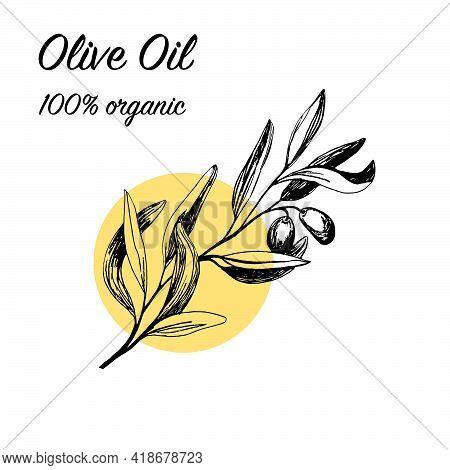 Olives Arrangements In Vector