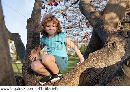 Kid Climbs A Tree. Little Boy Climbing In Adventure Activity Park.