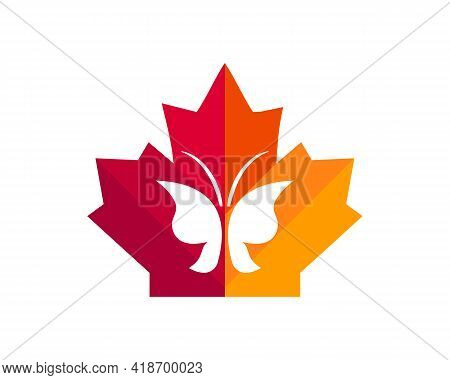 Maple Butterfly Logo Design. Canadian Butterfly Logo. Red Maple Leaf With Butterfly Vector