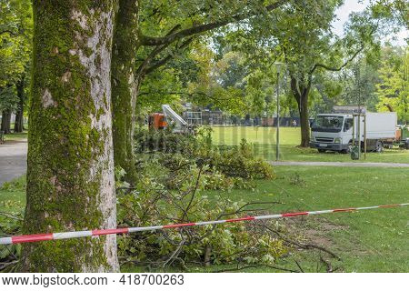 Warning Tape In The Park Because Of A Storm Damage. Fallen Tree After A Strong Summer Storm And Gust