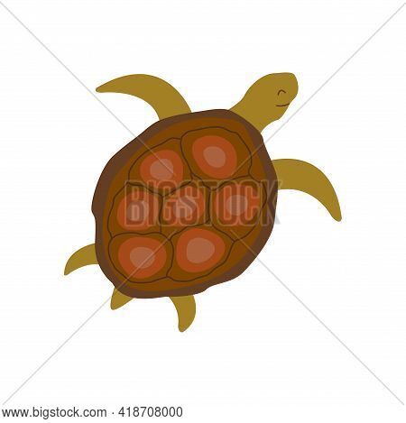 Cute Turtle Swims Slowly. Colorful Vector Isolated Hand Drawn Illustration. Sea Turtle. Amphibian Fr