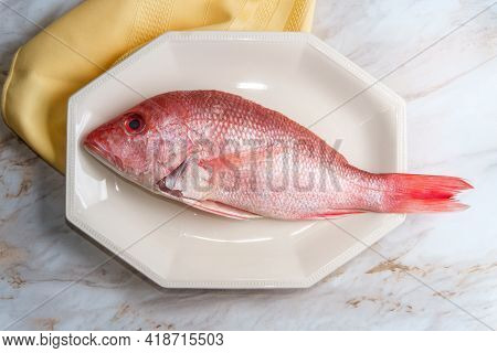Fresh Whole Head-on Raw Unseasoned Red Snapper Ready To Be Prepaired For Dinner