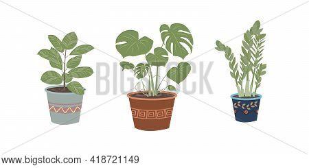 Houseplants Set Isolated On White Background. Stylish Set For Decorative Design. Flat Design Vector.