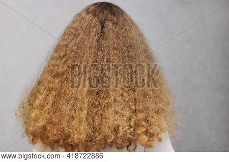 Beautiful, Strong, Healthy Female Hair. A Girl With Thick Natural, Long Wavy Hair Standing With Her