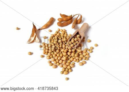 Glycine Max. Dry Pods, Soy Beans, Wooden Scoop.