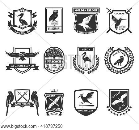 Birds Black Emblems Collection With Colibri Hummingbird Security System Shield And Golden Falcon Lab