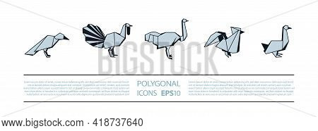 Polygonal Birds Linear Icons Set. Low Poly Poultry Bird Icon For Banner Such As Crow, Turkey, Ostric