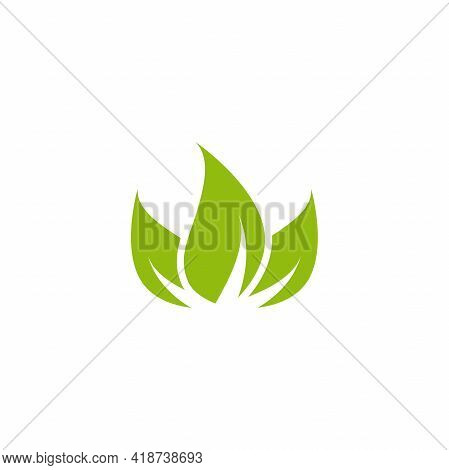 Three Leaves Eco Icon. Isolated On White. Vector Illustration. Green Flat Leaves. Leaf Organic Icon.