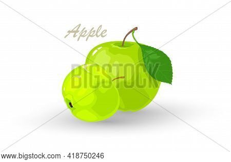 Fresh Green Apple And Segment Of It. Pomaceous Fruit Using For Cooking Jellies, Jams, Juice, Candies