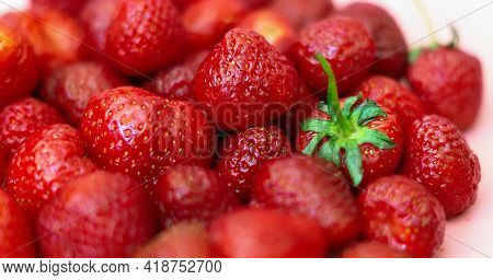 Fresh Organic Strawberries Close Up. Sweet Strawberries Are Homegrown. Beautiful Natural Background.
