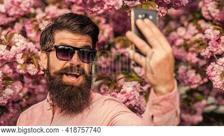 Selfie With Sakura. Man Taking Selfie Photo Smartphone. Streaming Online Video Call. Mobile Internet