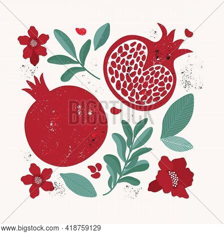 Set Of Design Elements In Vintage Style, Red Pomegranate, Leaves, Flowers, Fruit, Branch. Juicy Trop