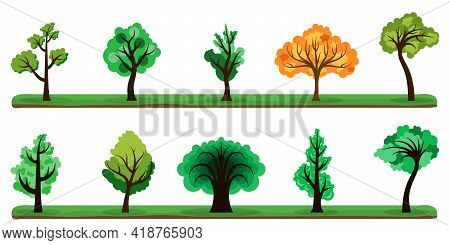 Trees Collection. Set Of Color Trees On White Background. Vector Illustration. Tree Icons Isolated.