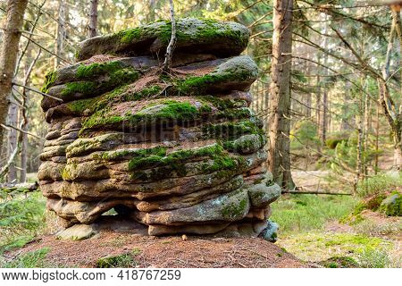 Deep Forest With Stones And Rocks Of Table Mountain, Wilderness Natural Landscape, Horizontal Photo