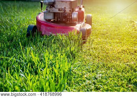 Mowing A Lawn With A Old Style Petrol Gasoline Lawn Mower Red Lawn Mower Cutting Green Grass On Sunn