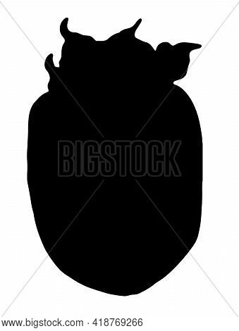 Vector Silhouette Persimmon In Sketch Style On White Background. Isolated Background.vector Isolated