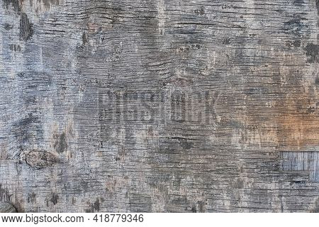 Cracked Old Board. Gray Patchy Background. Natural Material.