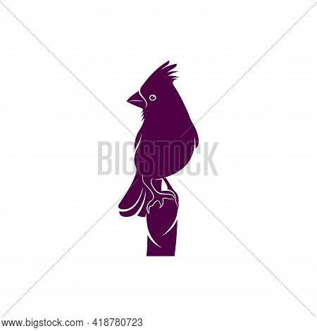 Northern Cardinal Bird Design Vector Illustration, Creative Northern Cardinal Bird Logo Design Conce