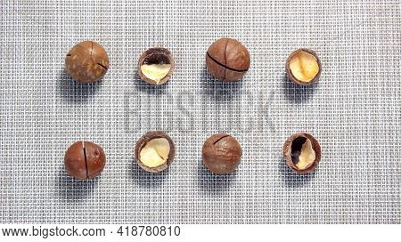 Round Macadamia Nuts In The Shell And An Empty Shell Close-up. Top View.