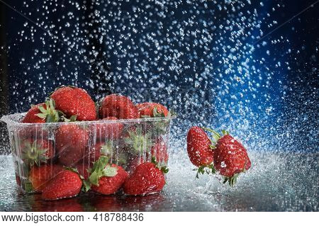 Big Red Fresh Strawberries In A Plastic Box Closeup Under The Water Drops In A Dark Blue Background.