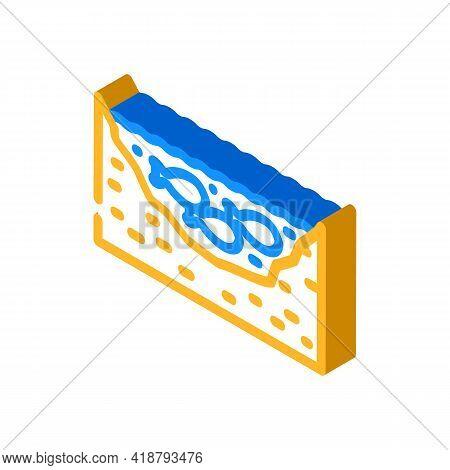 Pond Fish Isometric Icon Vector. Pond Fish Sign. Isolated Symbol Illustration