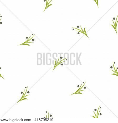 Seamless Floral Pattern With Olive Twigs. Nature Texture On White Background. Hand Drawn Shabby Spri